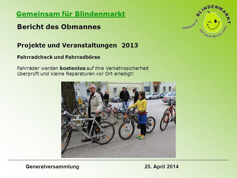 Gemeinsam für Blindenmarkt Bericht des Obmannes Projekte und Veranstaltungen 2013 Fahrradcheck und Fahrradbörse Fahrräder werden kostenlos auf ihre Verkehrssicherheit überprüft und kleine Reparaturen vor Ort erledigt.