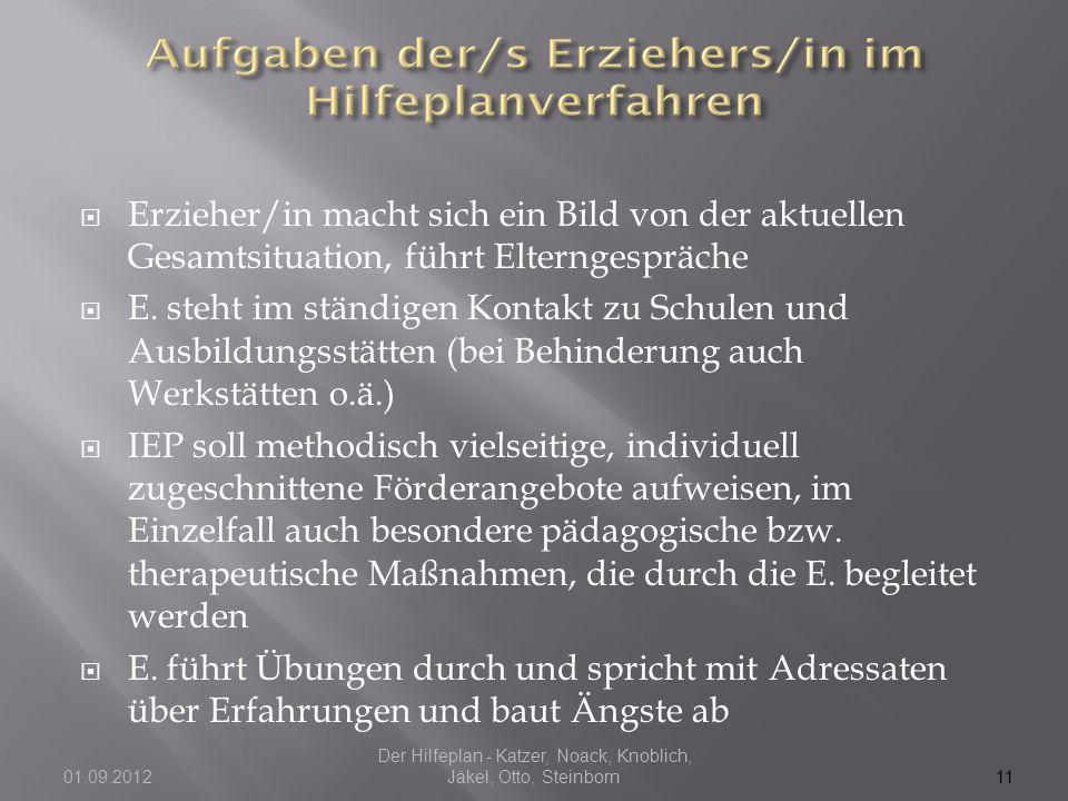 Der Hilfeplan - Katzer, Noack, Knoblich, Jäkel, Otto, Steinborn01.09.2012  Erzieher/in macht sich ein Bild von der aktuellen Gesamtsituation, führt E