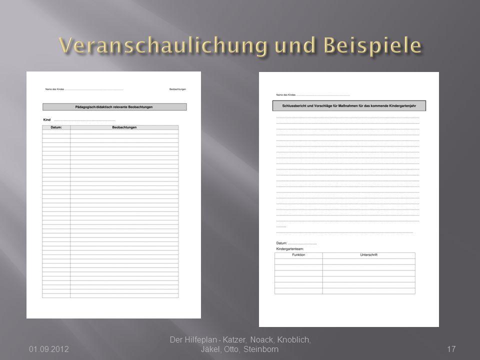 01.09.2012 Der Hilfeplan - Katzer, Noack, Knoblich, Jäkel, Otto, Steinborn17