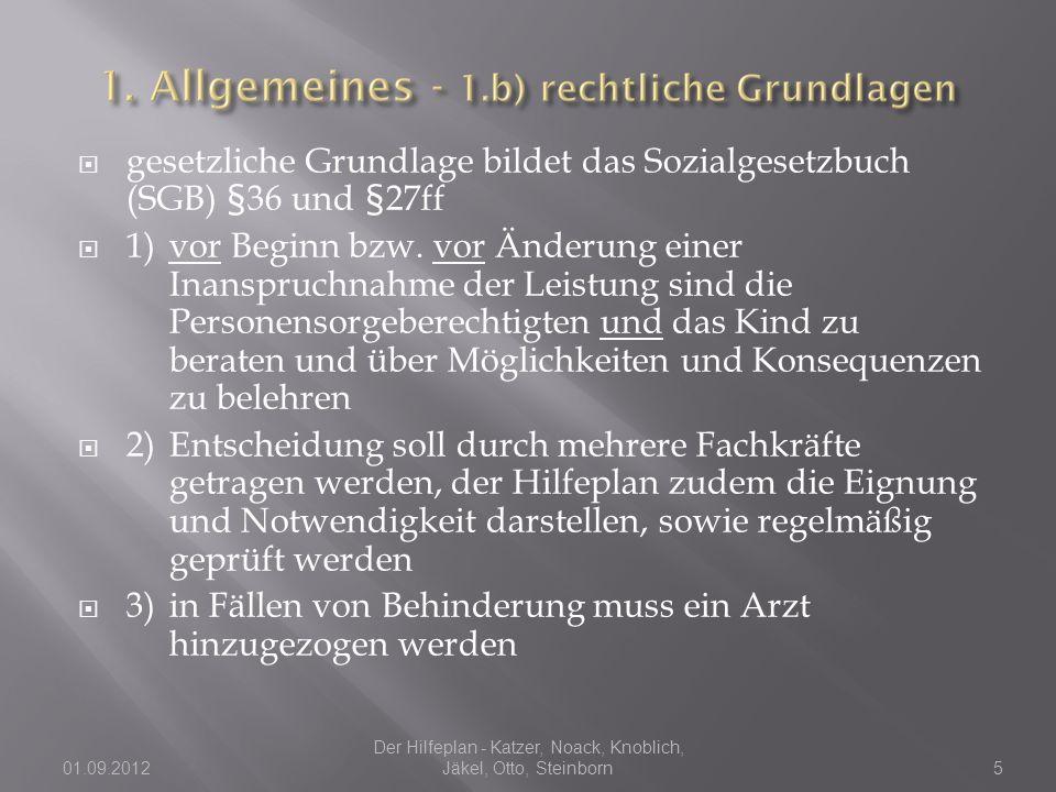 01.09.2012 Der Hilfeplan - Katzer, Noack, Knoblich, Jäkel, Otto, Steinborn16