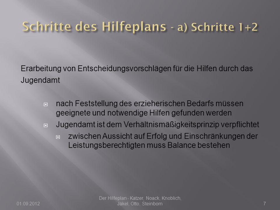  Film vom Landesverband Rheinland über Hilfeplanverfahren und gelebte Integration  Quelle: youtube.com 01.09.2012 Der Hilfeplan - Katzer, Noack, Knoblich, Jäkel, Otto, Steinborn