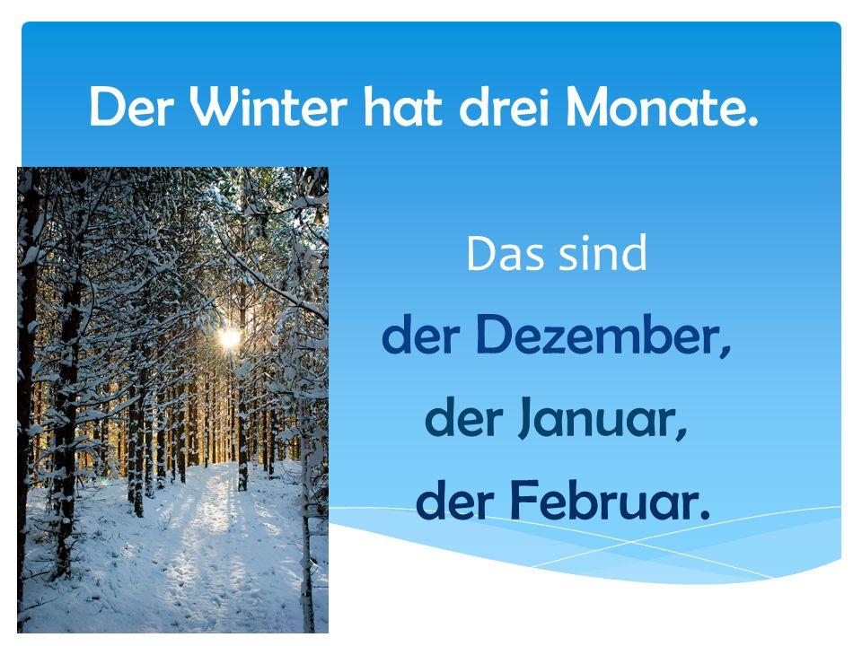 Der Winter hat drei Monate. Das sind der Dezember, der Januar, der Februar.