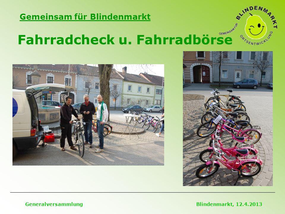Gemeinsam für Blindenmarkt Fahrradcheck u. Fahrradbörse Generalversammlung Blindenmarkt, 12.4.2013