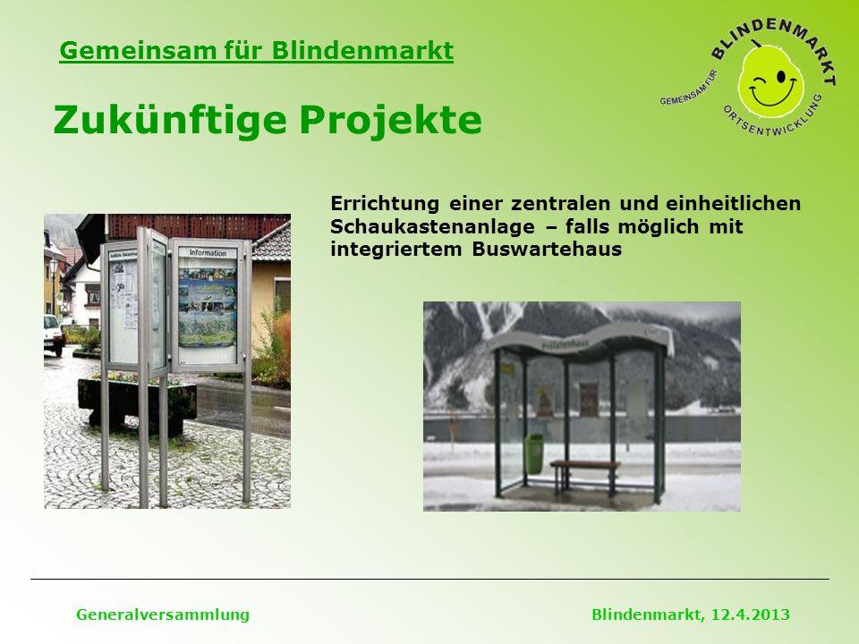 Gemeinsam für Blindenmarkt Zukünftige Projekte Generalversammlung Blindenmarkt, 12.4.2013 Errichtung einer zentralen und einheitlichen Schaukastenanlage – falls möglich mit integriertem Buswartehaus