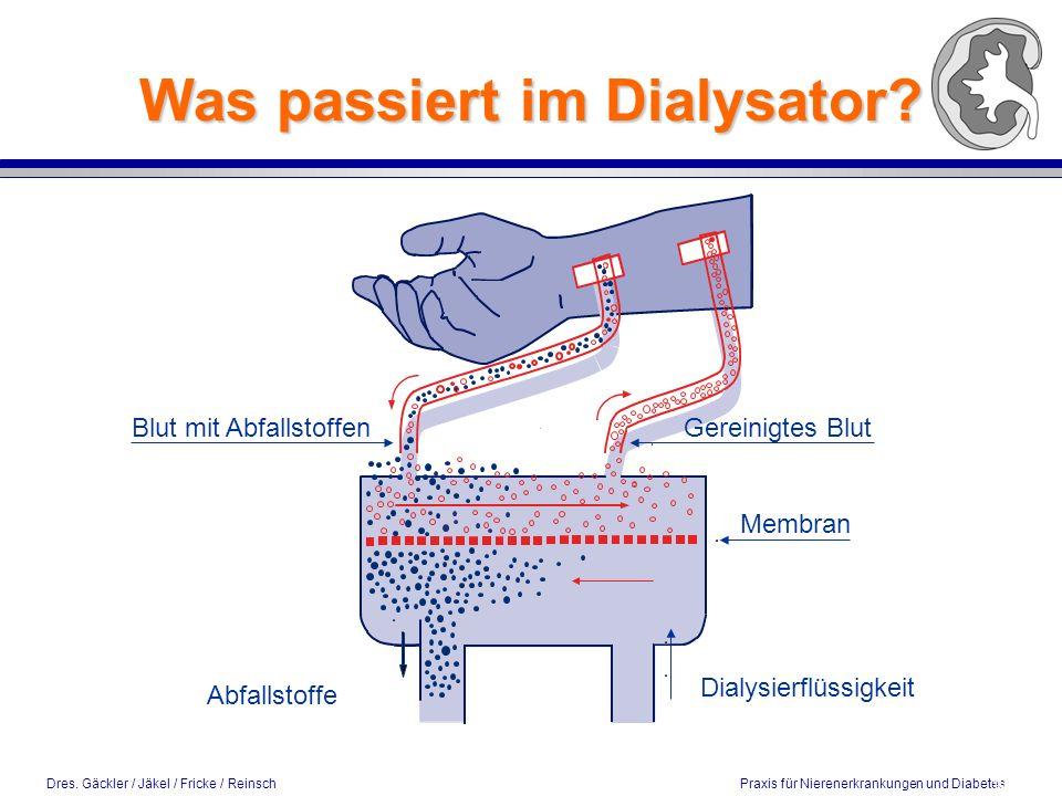 Dres. Gäckler / Jäkel / Fricke / Reinsch Praxis für Nierenerkrankungen und Diabetes Was passiert im Dialysator? 10 / 2002 Dialysierflüssigkeit Abfalls