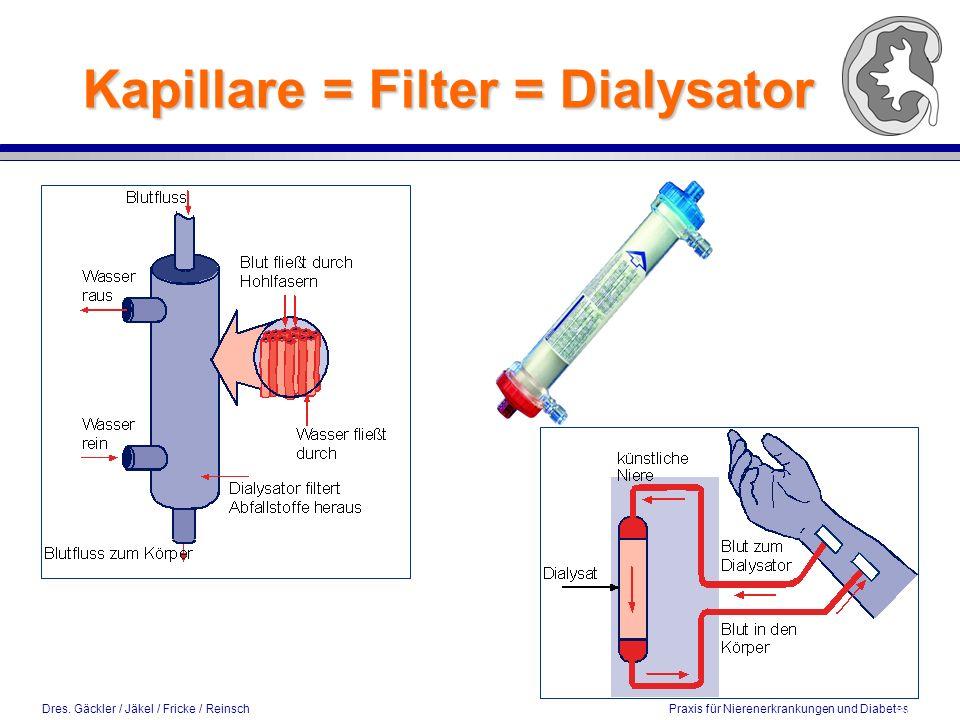 Kapillare = Filter = Dialysator 8 / 2002