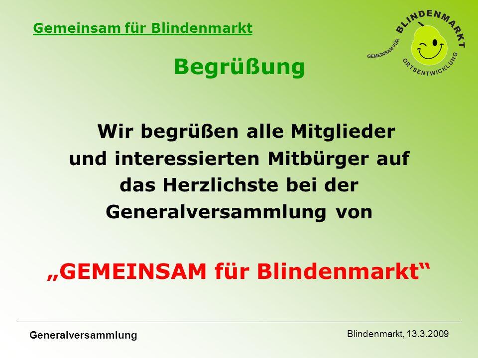 Gemeinsam für Blindenmarkt Generalversammlung Blindenmarkt, 13.3.2009 Stimmkarten