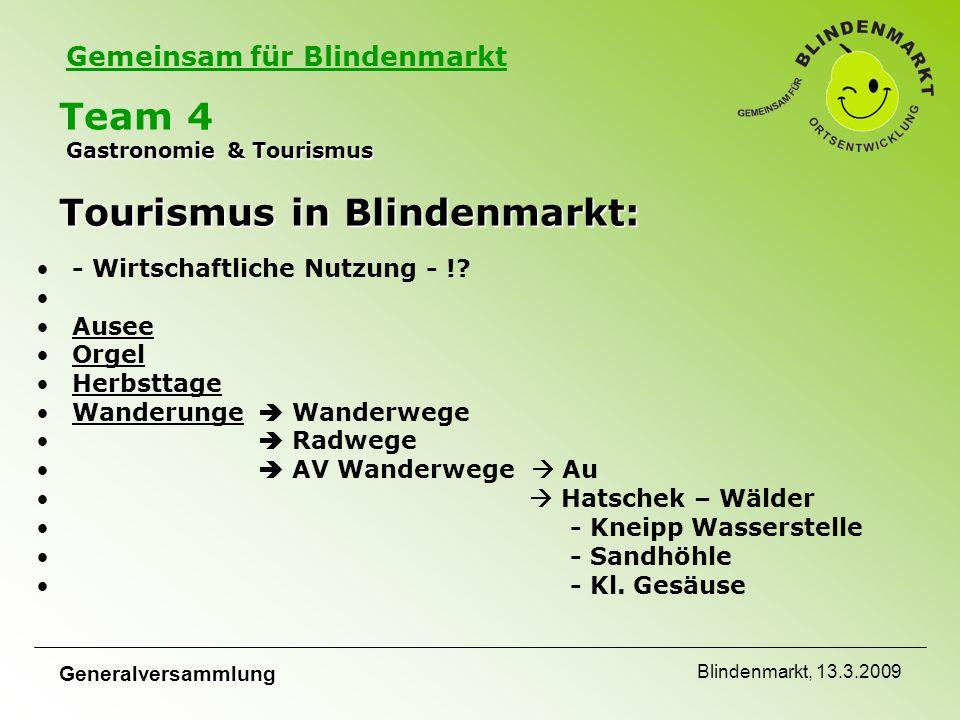 Gemeinsam für Blindenmarkt Generalversammlung Blindenmarkt, 13.3.2009 Gastronomie & Tourismus Tourismus in Blindenmarkt: Team 4 Gastronomie & Tourismus Tourismus in Blindenmarkt: - Wirtschaftliche Nutzung - !.
