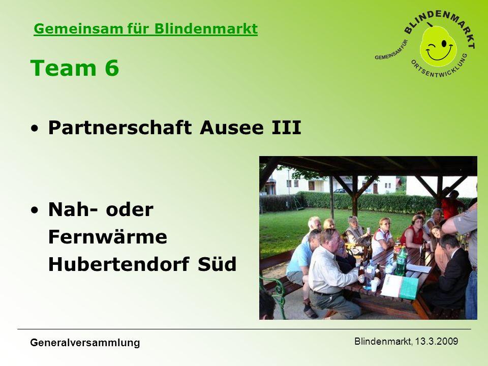 Gemeinsam für Blindenmarkt Generalversammlung Blindenmarkt, 13.3.2009 Team 6 Partnerschaft Ausee III Nah- oder Fernwärme Hubertendorf Süd
