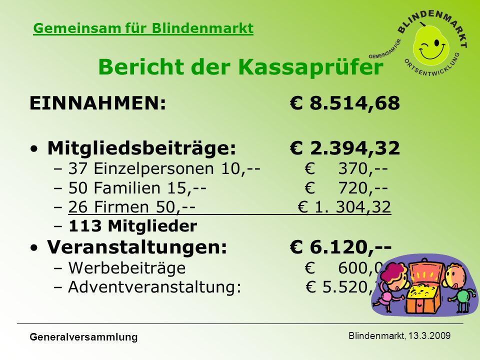 Gemeinsam für Blindenmarkt Generalversammlung Blindenmarkt, 13.3.2009 Bericht der Kassaprüfer EINNAHMEN:€ 8.514,68 Mitgliedsbeiträge: € 2.394,32 –37 Einzelpersonen 10,--€ 370,-- –50 Familien 15,--€ 720,-- –26 Firmen 50,-- € 1.