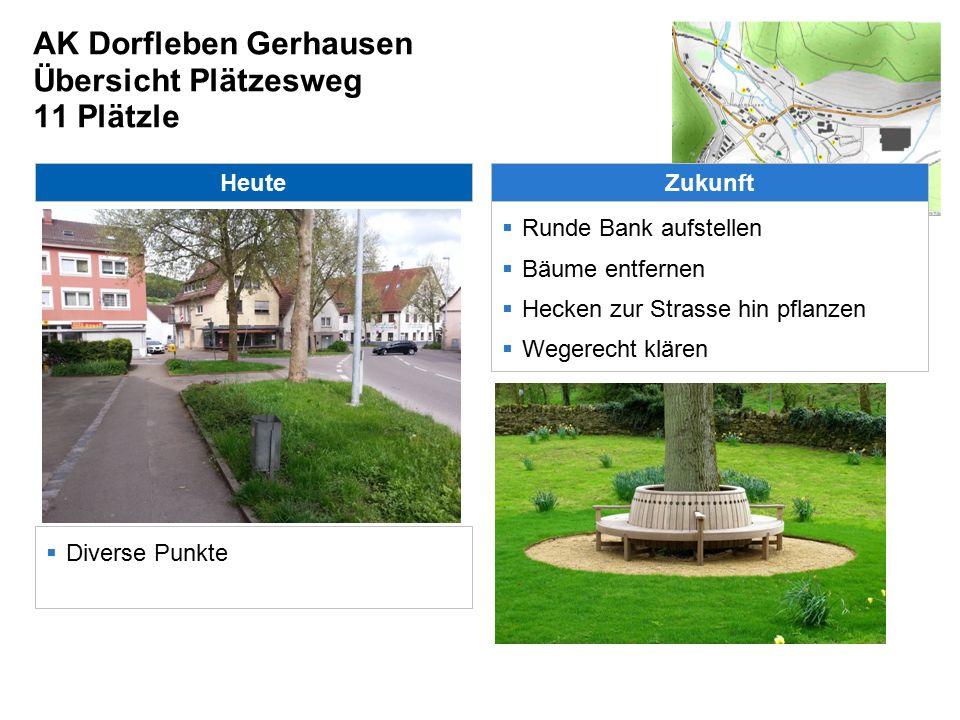 AK Dorfleben Gerhausen Übersicht Plätzesweg 11 Plätzle Heute  Diverse Punkte Zukunft  Runde Bank aufstellen  Bäume entfernen  Hecken zur Strasse hin pflanzen  Wegerecht klären