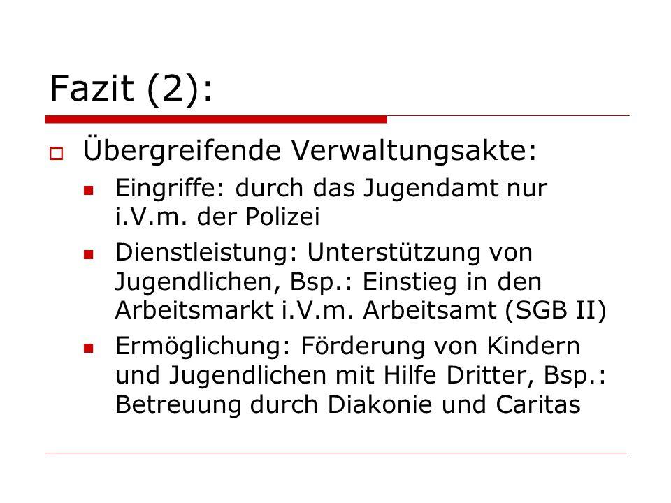 Fazit (2):  Übergreifende Verwaltungsakte: Eingriffe: durch das Jugendamt nur i.V.m.