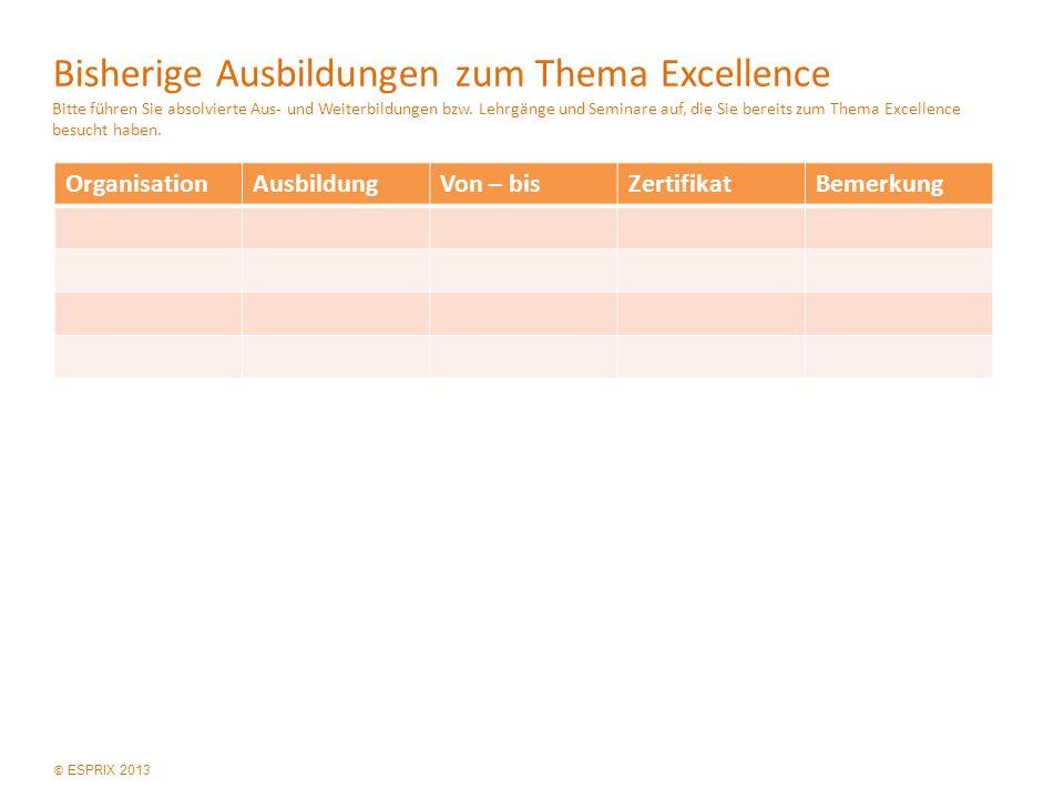 © ESPRIX 2013 Bisherige Ausbildungen zum Thema Excellence Bitte führen Sie absolvierte Aus- und Weiterbildungen bzw.