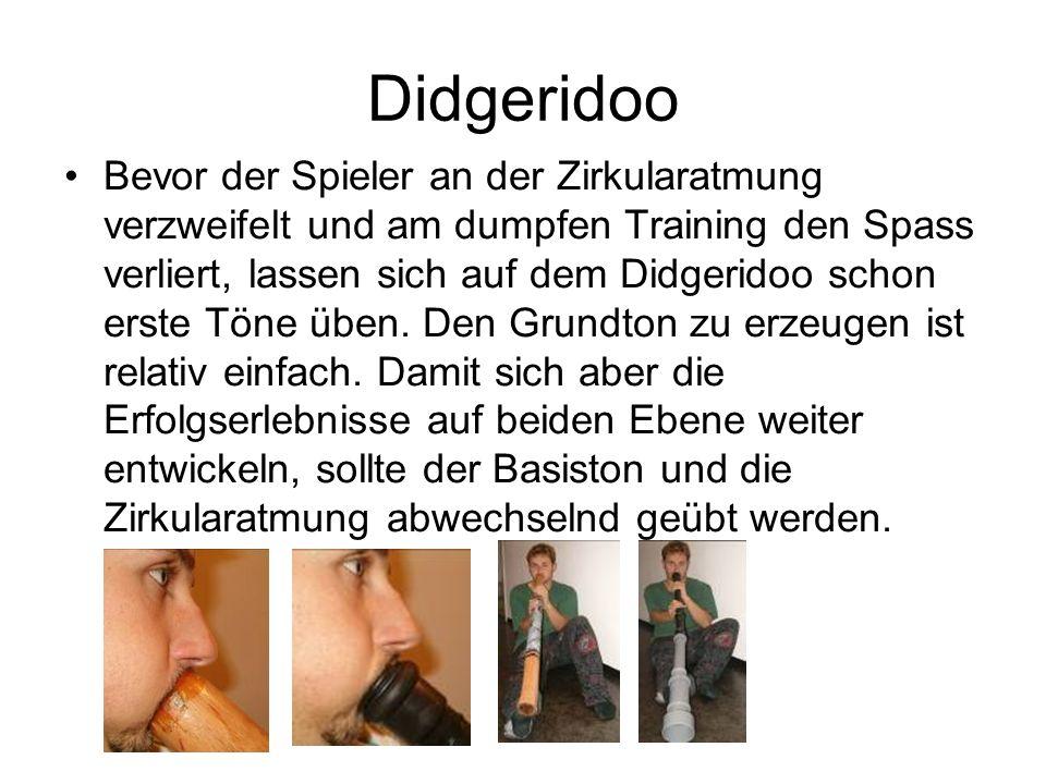 Didgeridoo Bevor der Spieler an der Zirkularatmung verzweifelt und am dumpfen Training den Spass verliert, lassen sich auf dem Didgeridoo schon erste Töne üben.