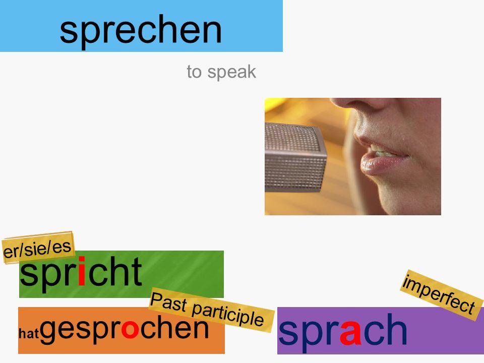 sprechen spricht hat gesprochen to speak er/sie/es Past participle sprach imperfect