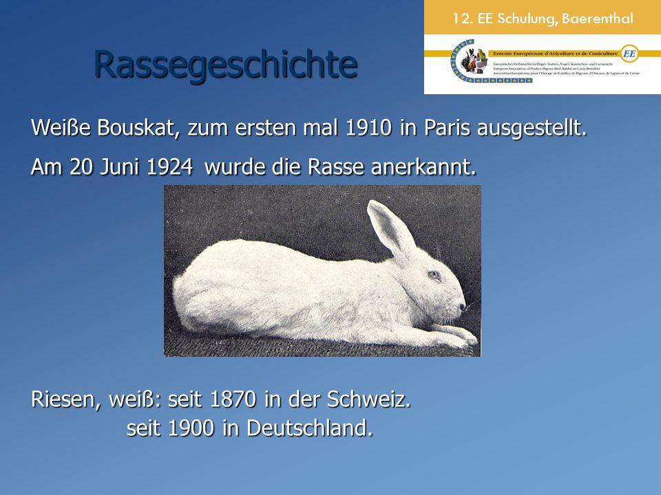 12. EE Schulung, Baerenthal Weiße Bouskat, zum ersten mal 1910 in Paris ausgestellt.