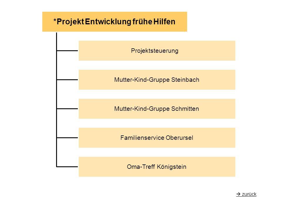 *Projekt Entwicklung frühe Hilfen Projektsteuerung Mutter-Kind-Gruppe Steinbach Mutter-Kind-Gruppe Schmitten Familienservice Oberursel Oma-Treff Königstein  zurück