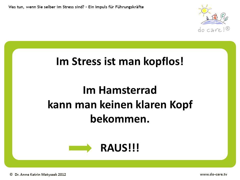 Was tun, wenn Sie selber im Stress sind? – Ein Impuls für Führungskräfte ® www.do-care.tv © Dr. Anne Katrin Matyssek 2012 Im Stress ist man kopflos! I