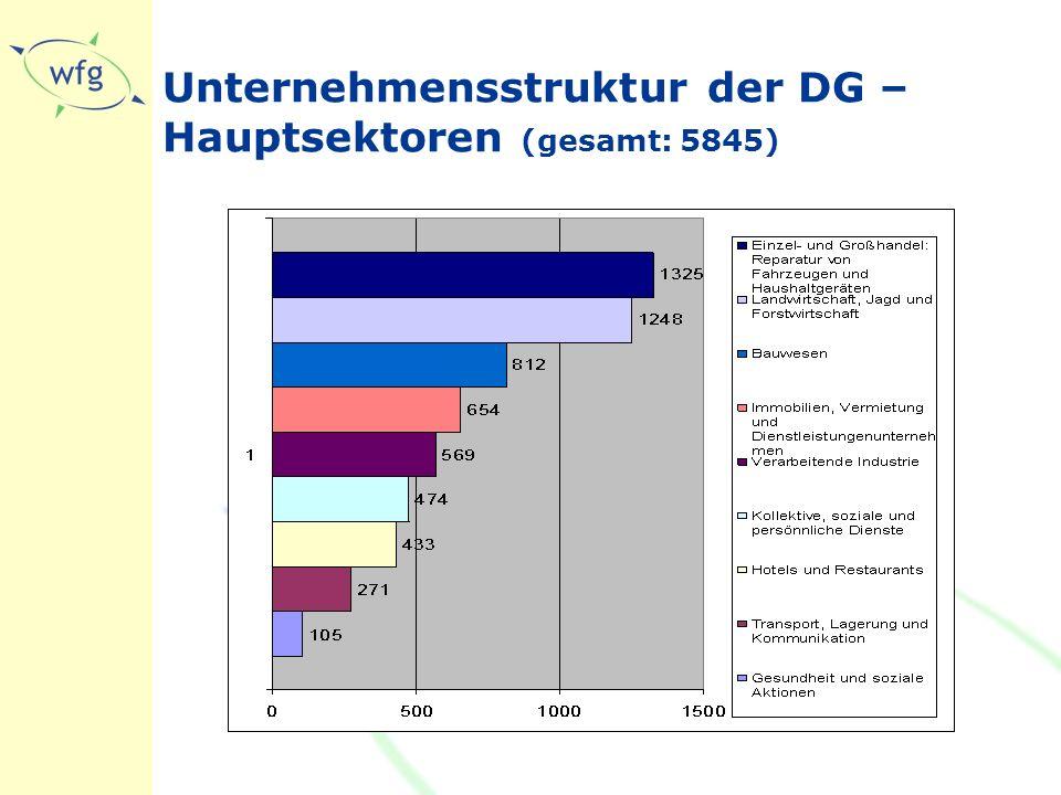 Unternehmensstruktur der DG – Hauptsektoren (gesamt: 5845)