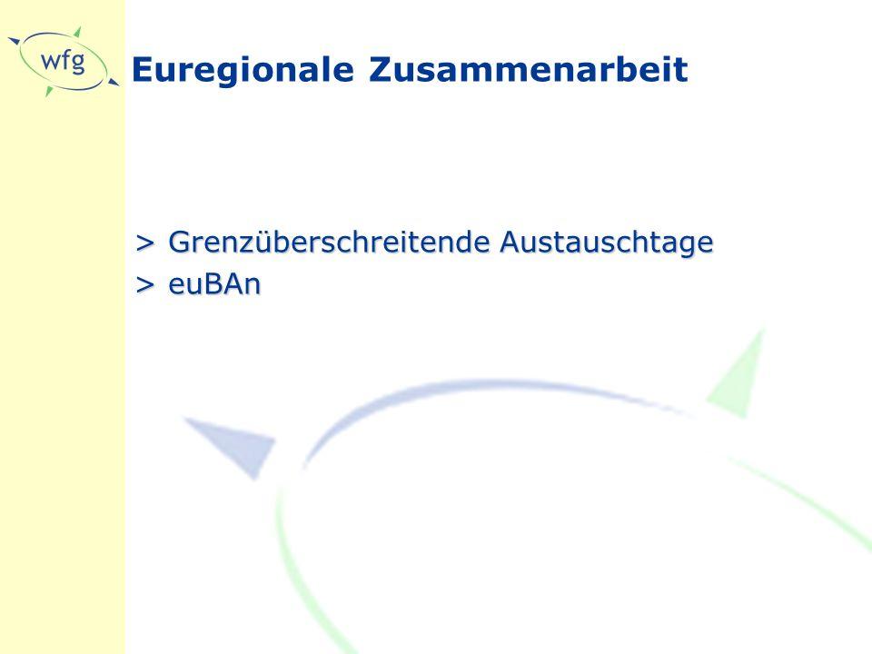 Euregionale Zusammenarbeit >Grenzüberschreitende Austauschtage >euBAn