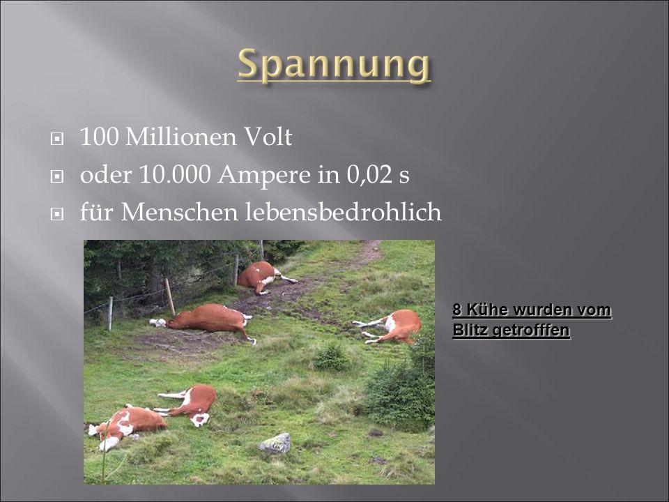  100 Millionen Volt  oder 10.000 Ampere in 0,02 s  für Menschen lebensbedrohlich 8 Kühe wurden vom Blitz getrofffen