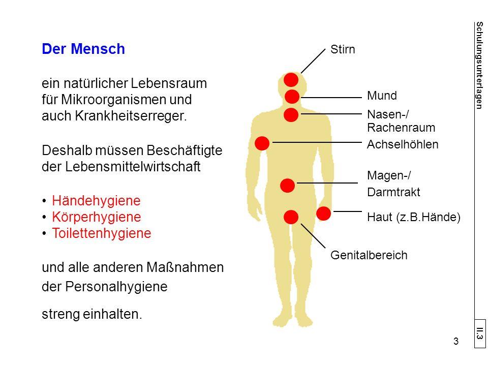 Der Mensch ein natürlicher Lebensraum für Mikroorganismen und auch Krankheitserreger.