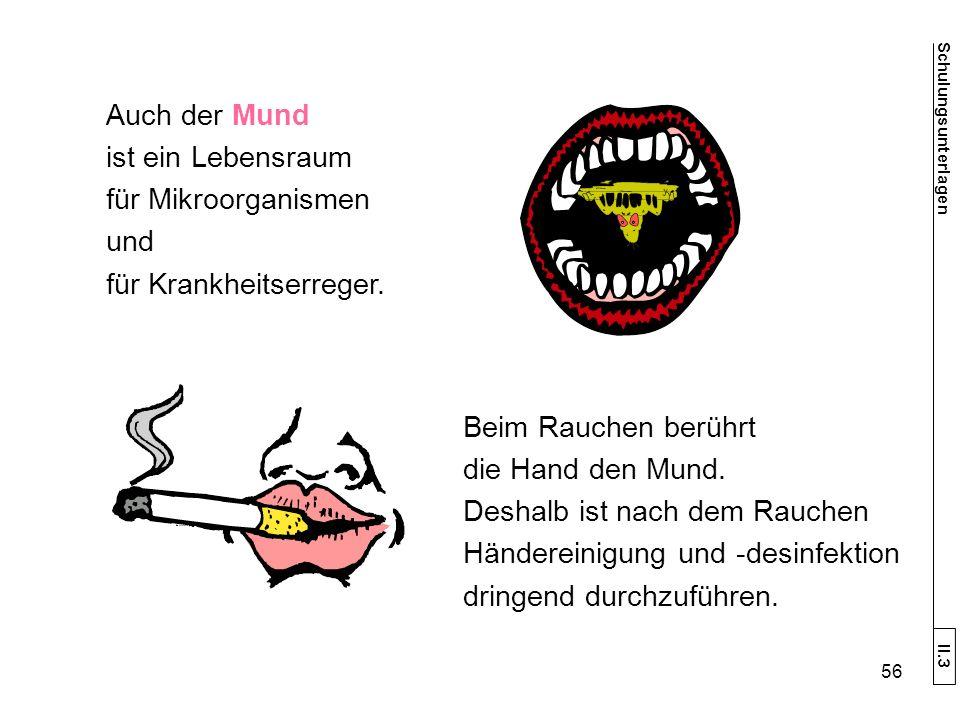 Auch der Mund ist ein Lebensraum für Mikroorganismen und für Krankheitserreger.