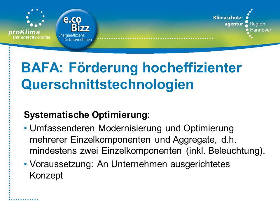 BAFA: Förderung hocheffizienter Querschnittstechnologien Systematische Optimierung: Umfassenderen Modernisierung und Optimierung mehrerer Einzelkompon