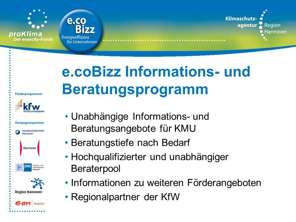 e.coBizz Informations- und Beratungsprogramm Unabhängige Informations- und Beratungsangebote für KMU Beratungstiefe nach Bedarf Hochqualifizierter und