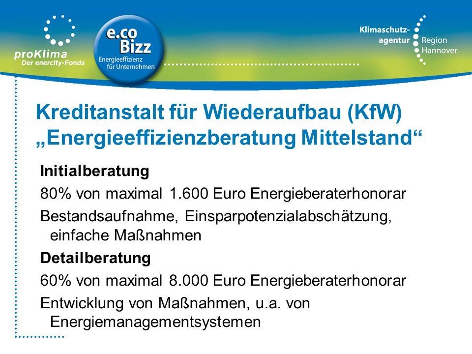 Initialberatung 80% von maximal 1.600 Euro Energieberaterhonorar Bestandsaufnahme, Einsparpotenzialabschätzung, einfache Maßnahmen Detailberatung 60%