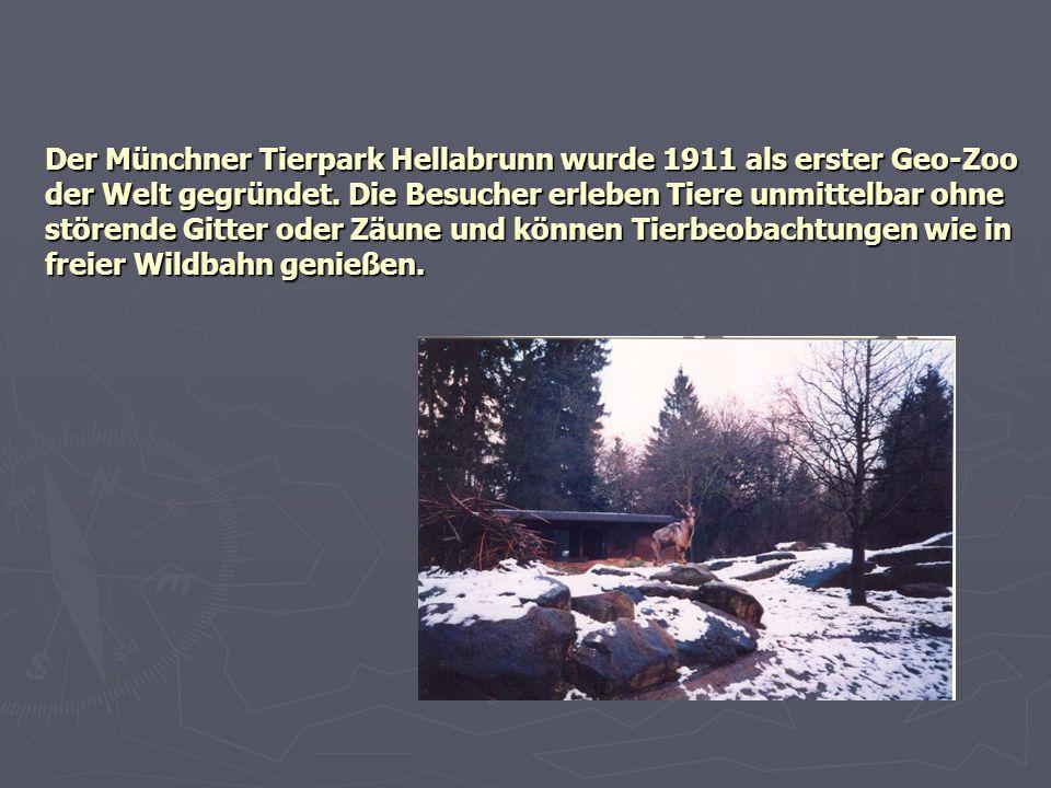 Der Münchner Tierpark Hellabrunn wurde 1911 als erster Geo-Zoo der Welt gegründet. Die Besucher erleben Tiere unmittelbar ohne störende Gitter oder Zä