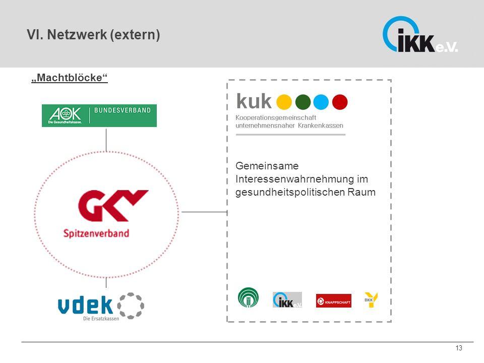 """13 Gemeinsame Interessenwahrnehmung im gesundheitspolitischen Raum """"Machtblöcke VI."""