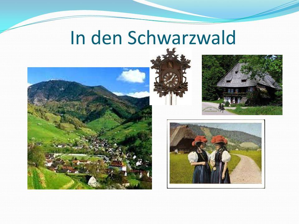 In den Schwarzwald