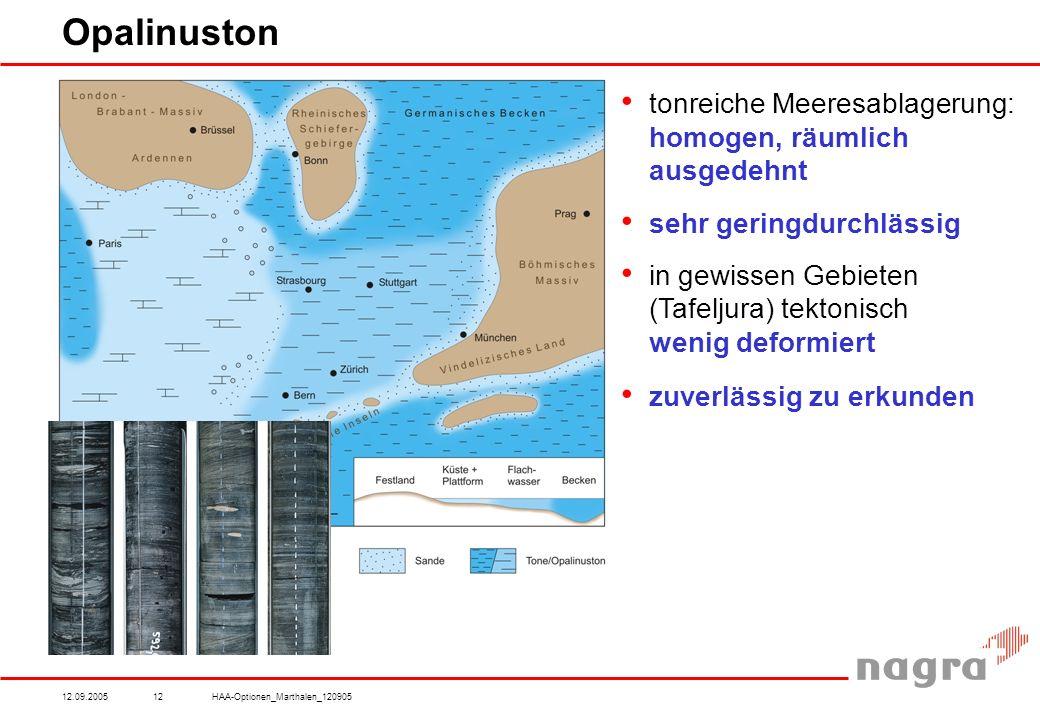 12.09.2005HAA-Optionen_Marthalen_12090512 Opalinuston tonreiche Meeresablagerung: homogen, räumlich ausgedehnt sehr geringdurchlässig in gewissen Gebieten (Tafeljura) tektonisch wenig deformiert zuverlässig zu erkunden