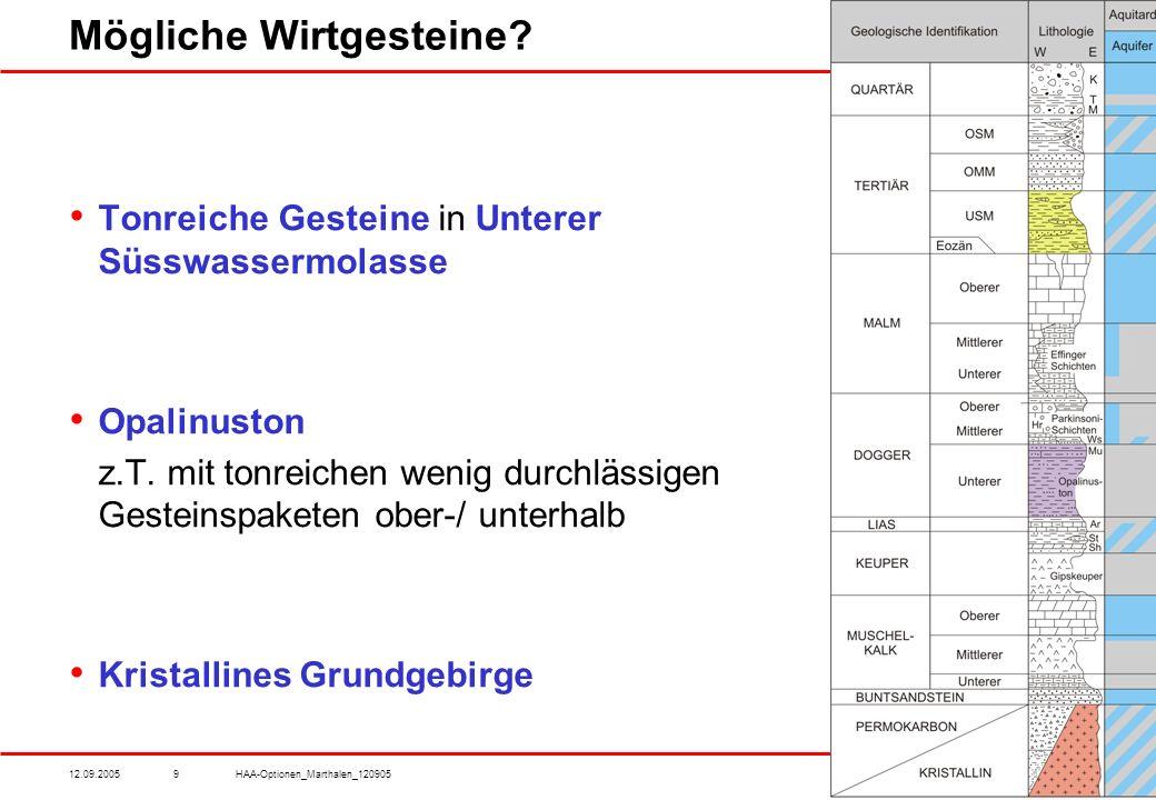12.09.2005HAA-Optionen_Marthalen_1209059 Mögliche Wirtgesteine.