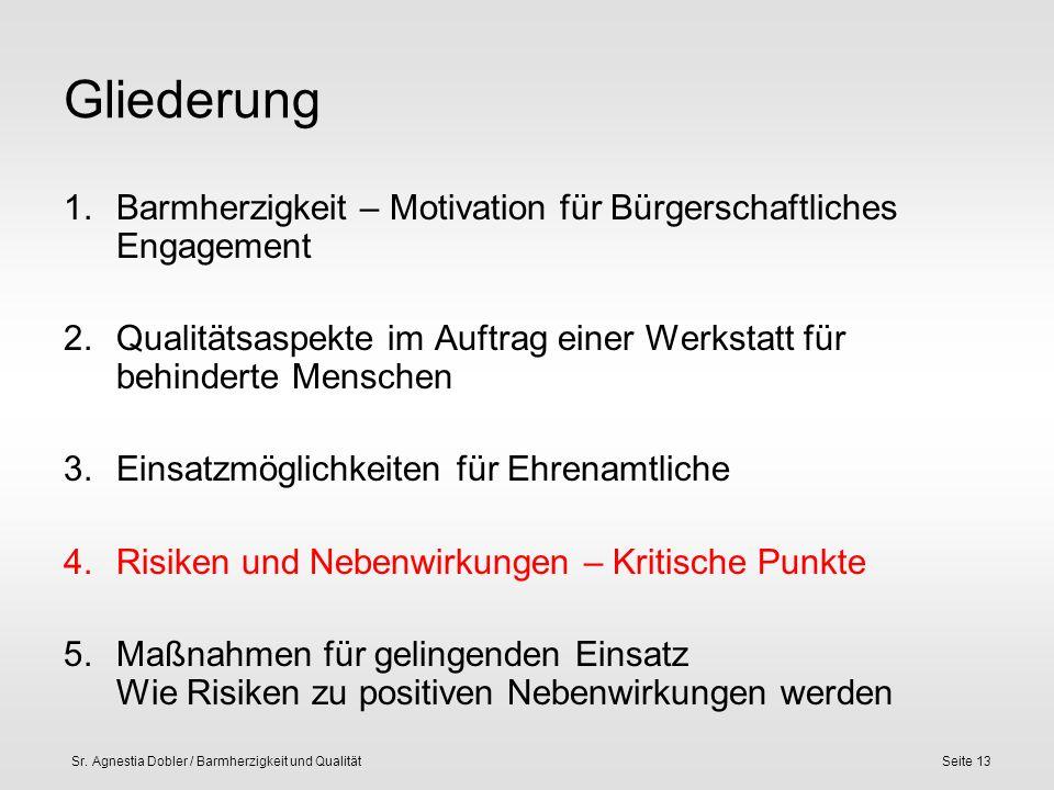 Sr. Agnestia Dobler / Barmherzigkeit und QualitätSeite 13 Gliederung 1.Barmherzigkeit – Motivation für Bürgerschaftliches Engagement 2.Qualitätsaspekt