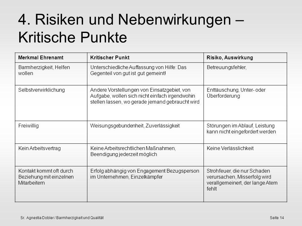 Sr. Agnestia Dobler / Barmherzigkeit und QualitätSeite 14 4. Risiken und Nebenwirkungen – Kritische Punkte Merkmal EhrenamtKritischer PunktRisiko, Aus