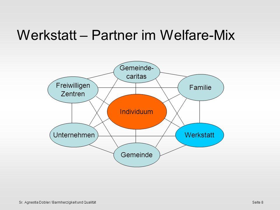 Sr. Agnestia Dobler / Barmherzigkeit und QualitätSeite 8 Werkstatt – Partner im Welfare-Mix Individuum Gemeinde- caritas Freiwilligen Zentren Unterneh
