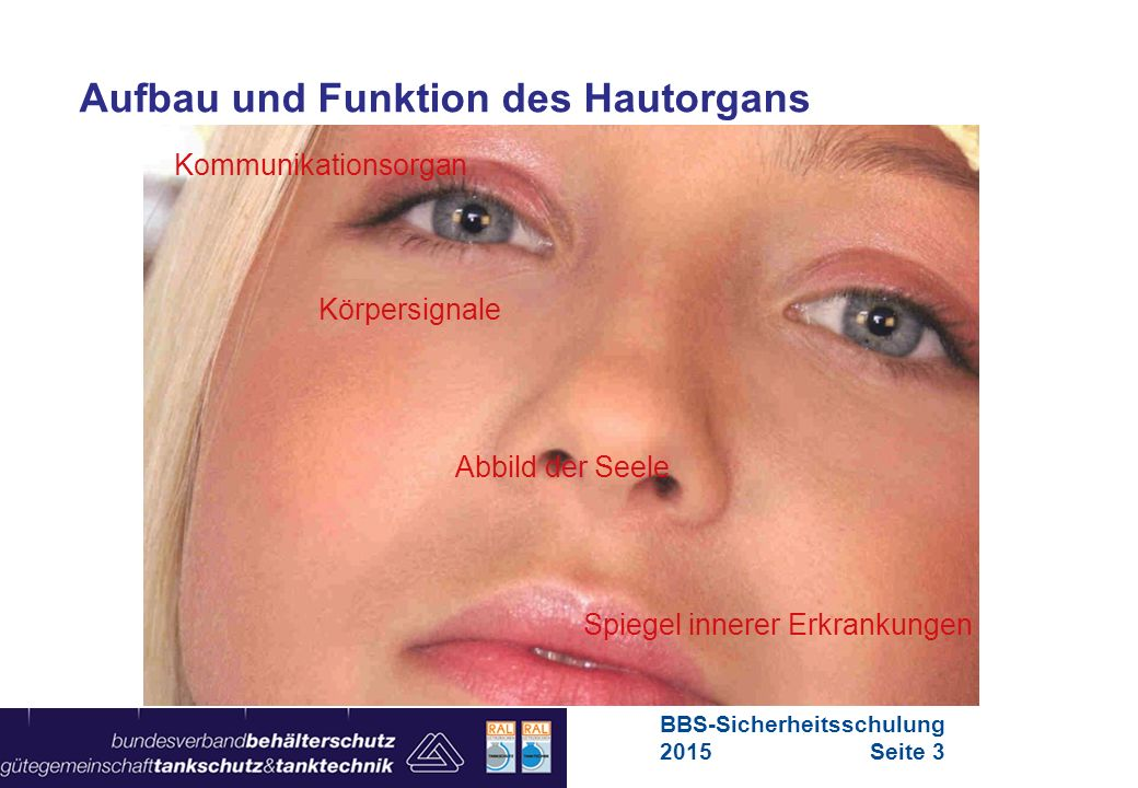 Maschinen in Europa Vorschriften-Übersicht für Maschinen Aufbau und Funktion des Hautorgans Kommunikationsorgan Körpersignale Abbild der Seele Spiegel