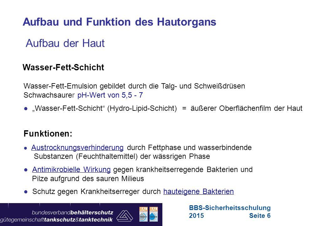 Maschinen in Europa Vorschriften-Übersicht für Maschinen Funktion der Haut Ein starkes Stu ̈ ck.wmv BBS-Sicherheitsschulung 2015Seite 7