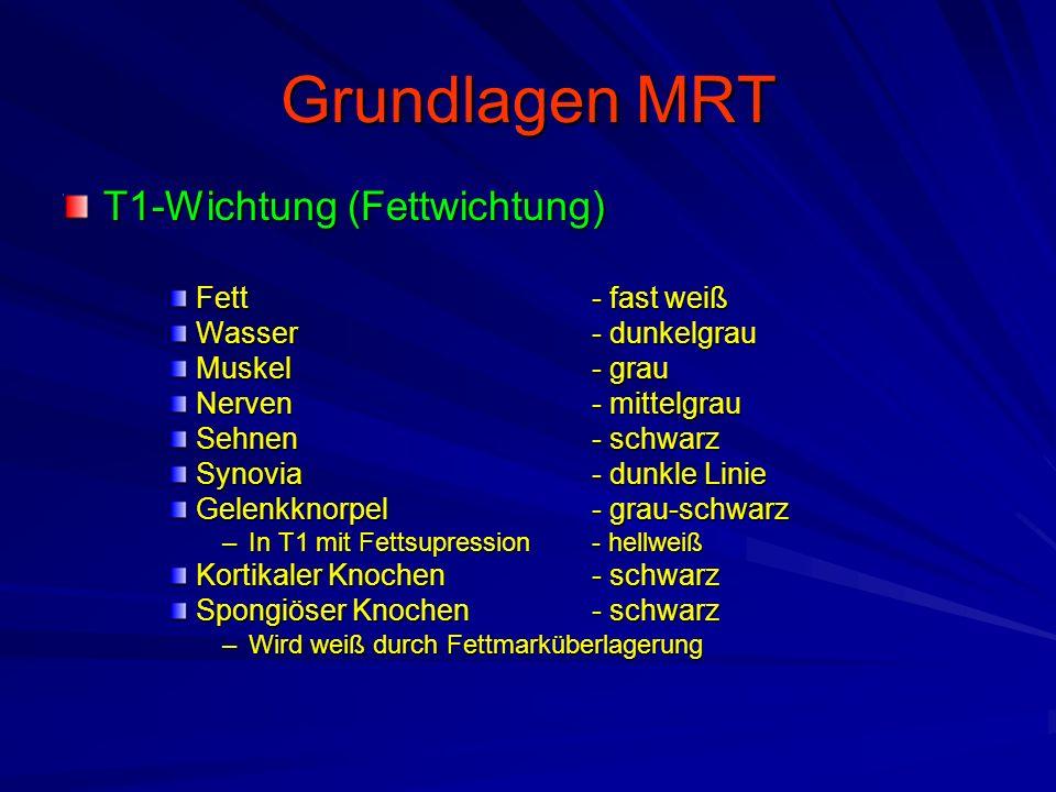 T1-Wichtung (Fettwichtung) Fett - fast weiß Wasser - dunkelgrau Muskel - grau Nerven- mittelgrau Sehnen - schwarz Synovia- dunkle Linie Gelenkknorpel-