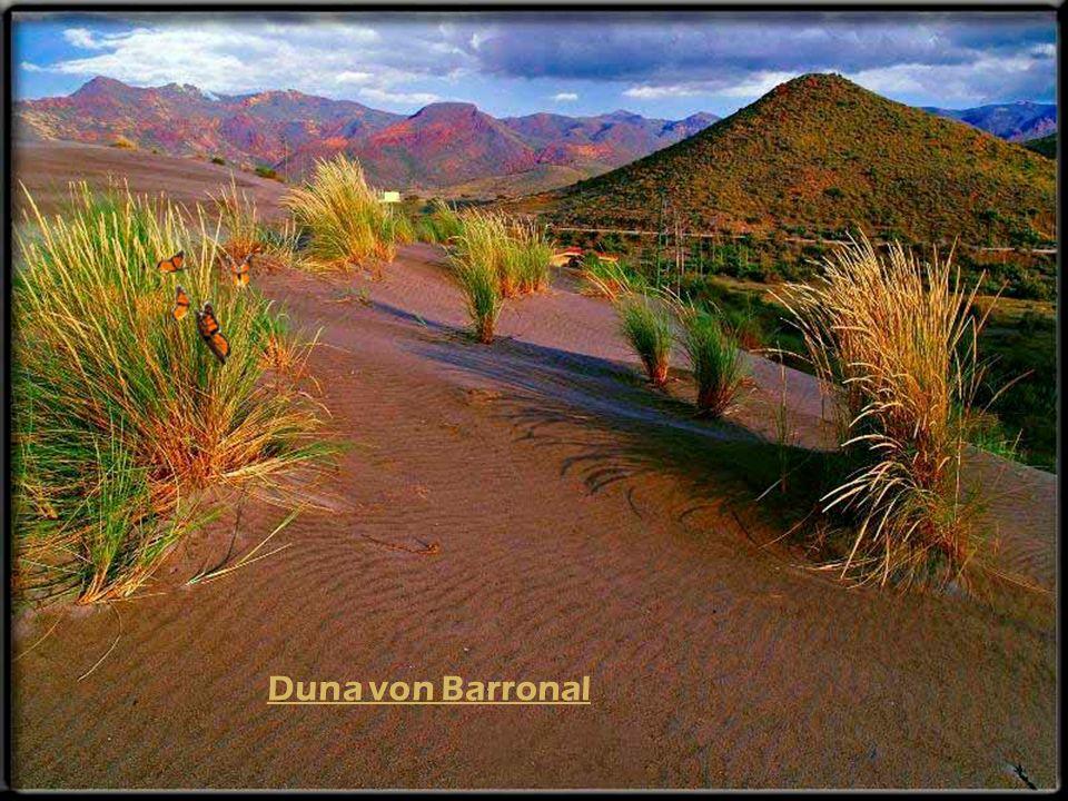 Duna von Barronal