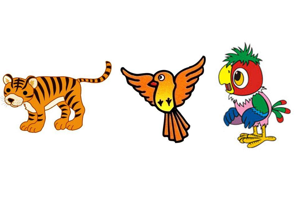 der Tiger der Vogel der Papagei