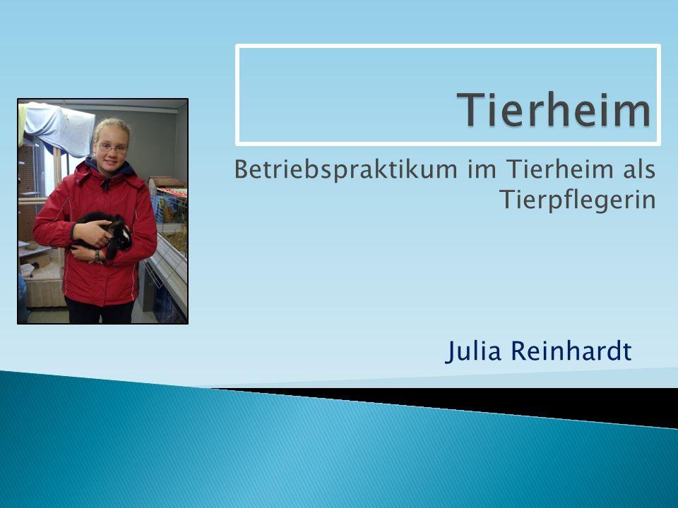Betriebspraktikum im Tierheim als Tierpflegerin Julia Reinhardt