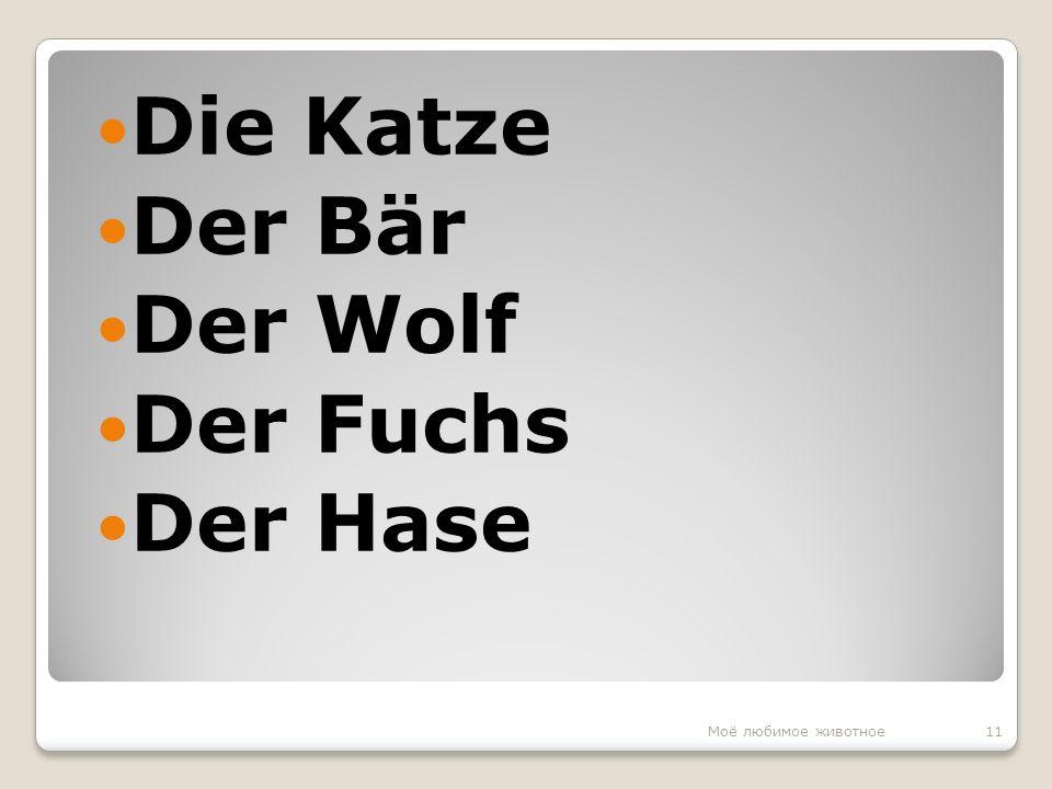 Die Katze Der Bär Der Wolf Der Fuchs Der Hase 11Моё любимое животное
