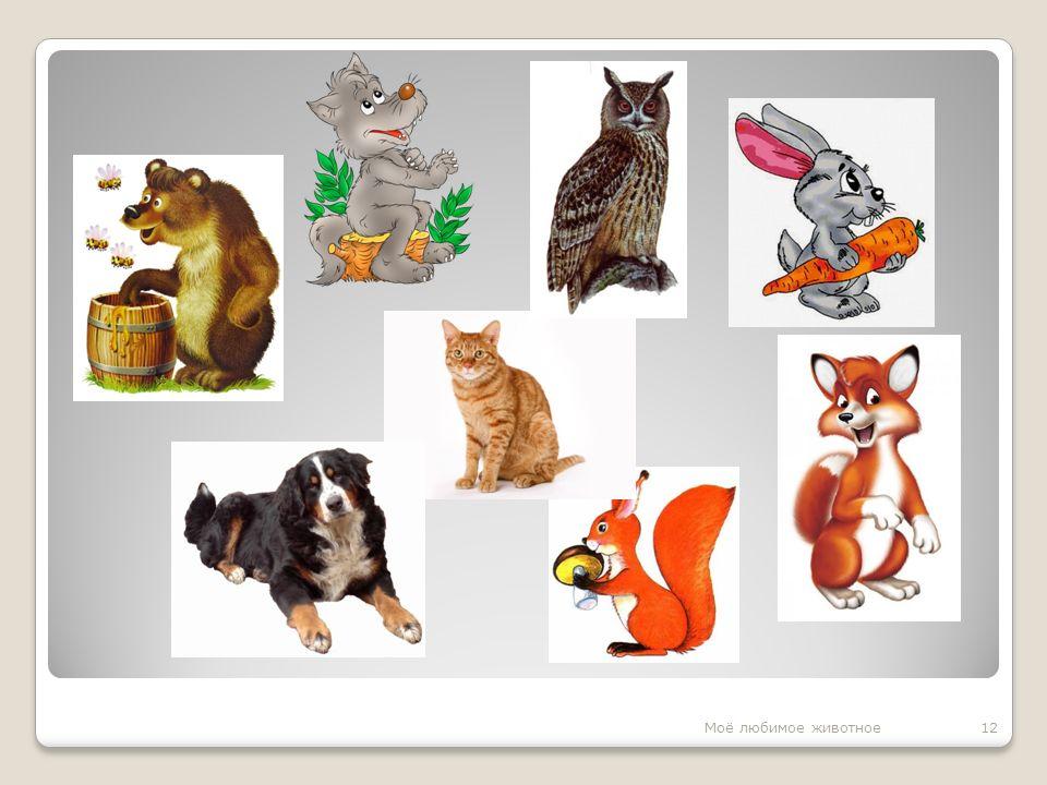 12Моё любимое животное