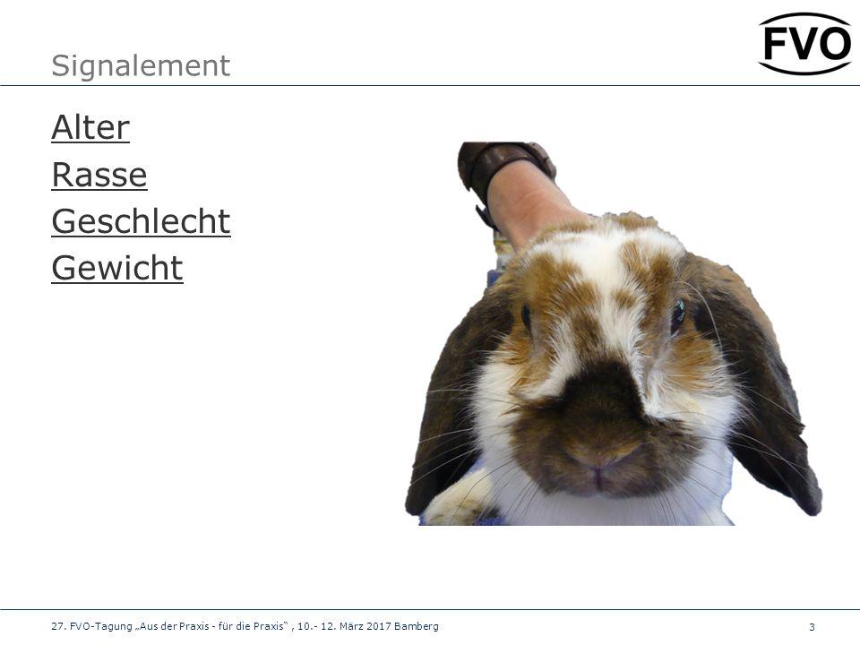 4 Vorbericht Zum Tier Herkunft, Haltung, Allgemeingesundheit Zum aktuellen (Augen)problem Symptome Dauer/Verlauf Voruntersuchungen.