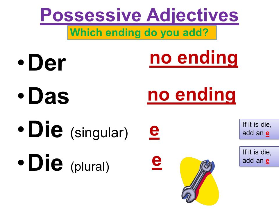 Possessive Adjectives Which ending do you add.