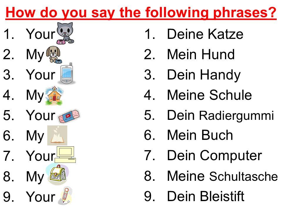 Possessive Adjectives 1.______ Lehrer heisst Bob.(my) 2.Er mag ______ Bücher.