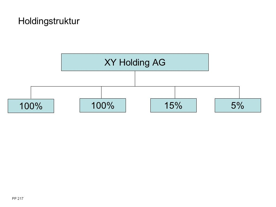 PP 217 XY Holding AG 100% 15%5% Holdingstruktur
